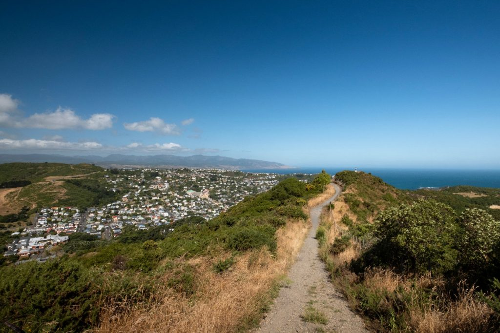 A footpath on the top of a hill that looks as if it is leading towards the sea. In the background you can see the coast and ocean located in Island Bay, Wellington.