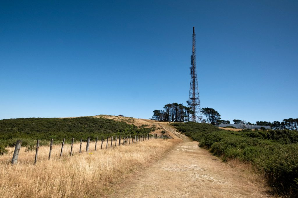 A grassed footpath running up to a large television tower on Wellingtons Northern Walkway.