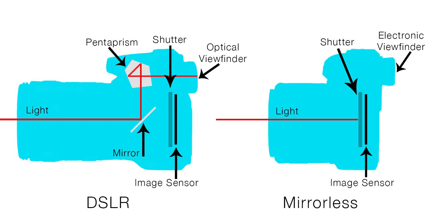 A diagram comparing how the viewfinder works in a DSLR and mirrorless camera and how they both differ.
