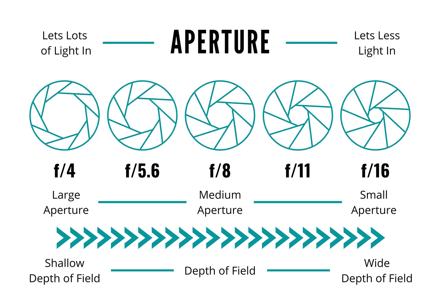 A diagram that helps understand aperture. This is very important for a landscape photographer to understand.