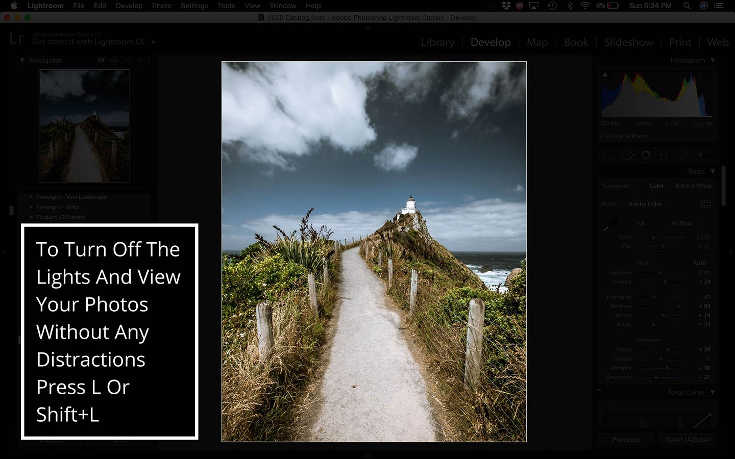 This printscreen from the Lightroom desktop program shows how you can turn the lights off so that you can view your photos without any distractions.