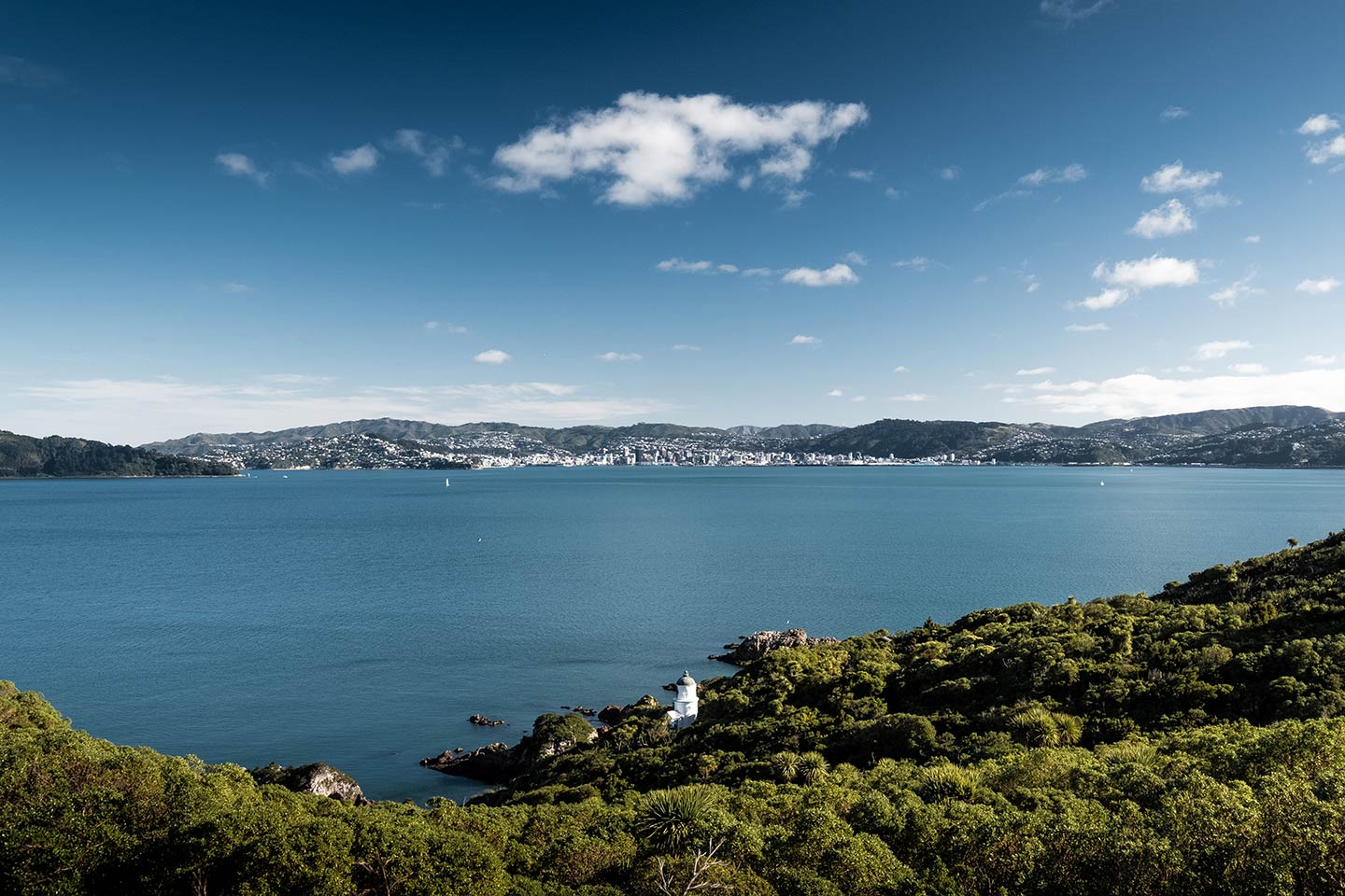From the top of Matiu/Somes Island a lighthouse is visible at the bottom of the island. In the distance you can see the city of Wellington.