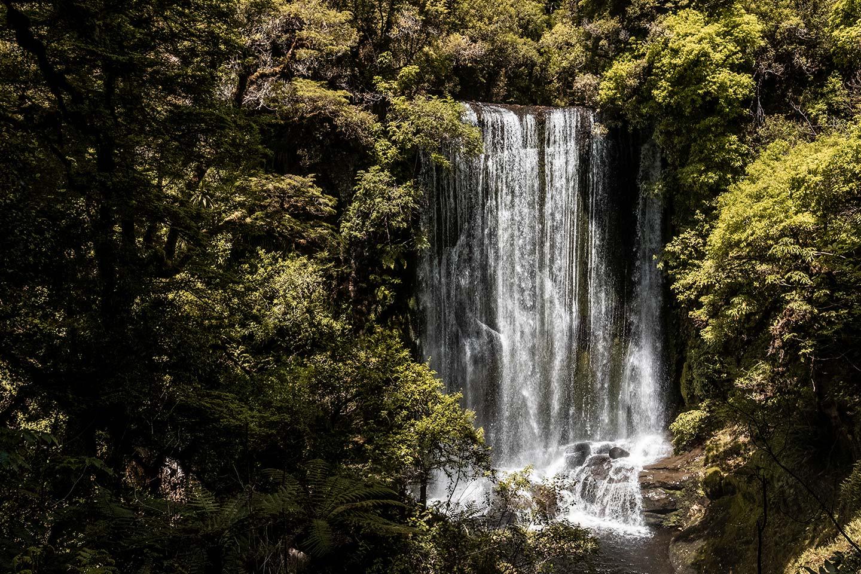 Korokoro falls cascades to the rocks below. This waterfall is found on the Lake Waikaremoana Great Walk.