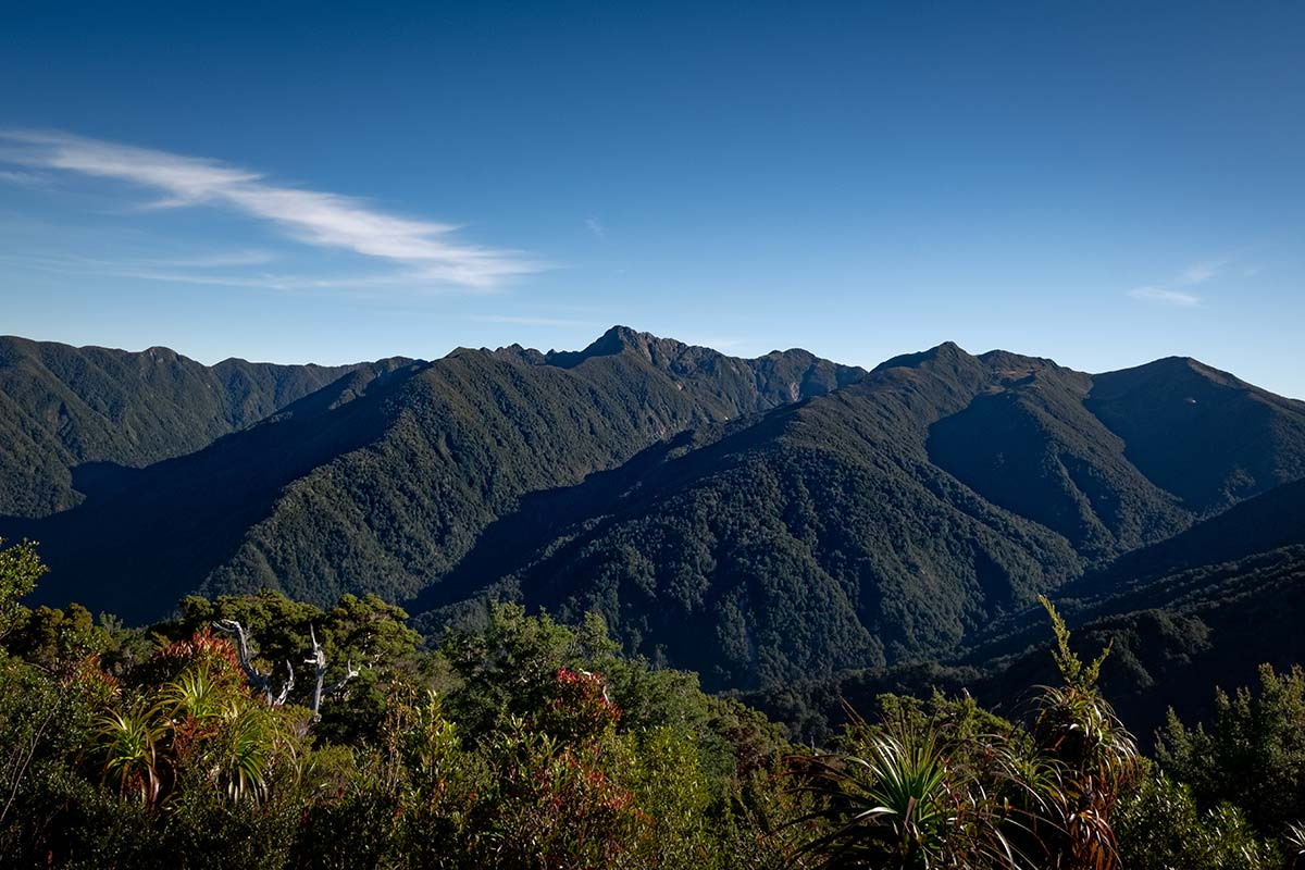 A large green mountain range which can be found at Flanagan's Corner on the Heaphy Track.