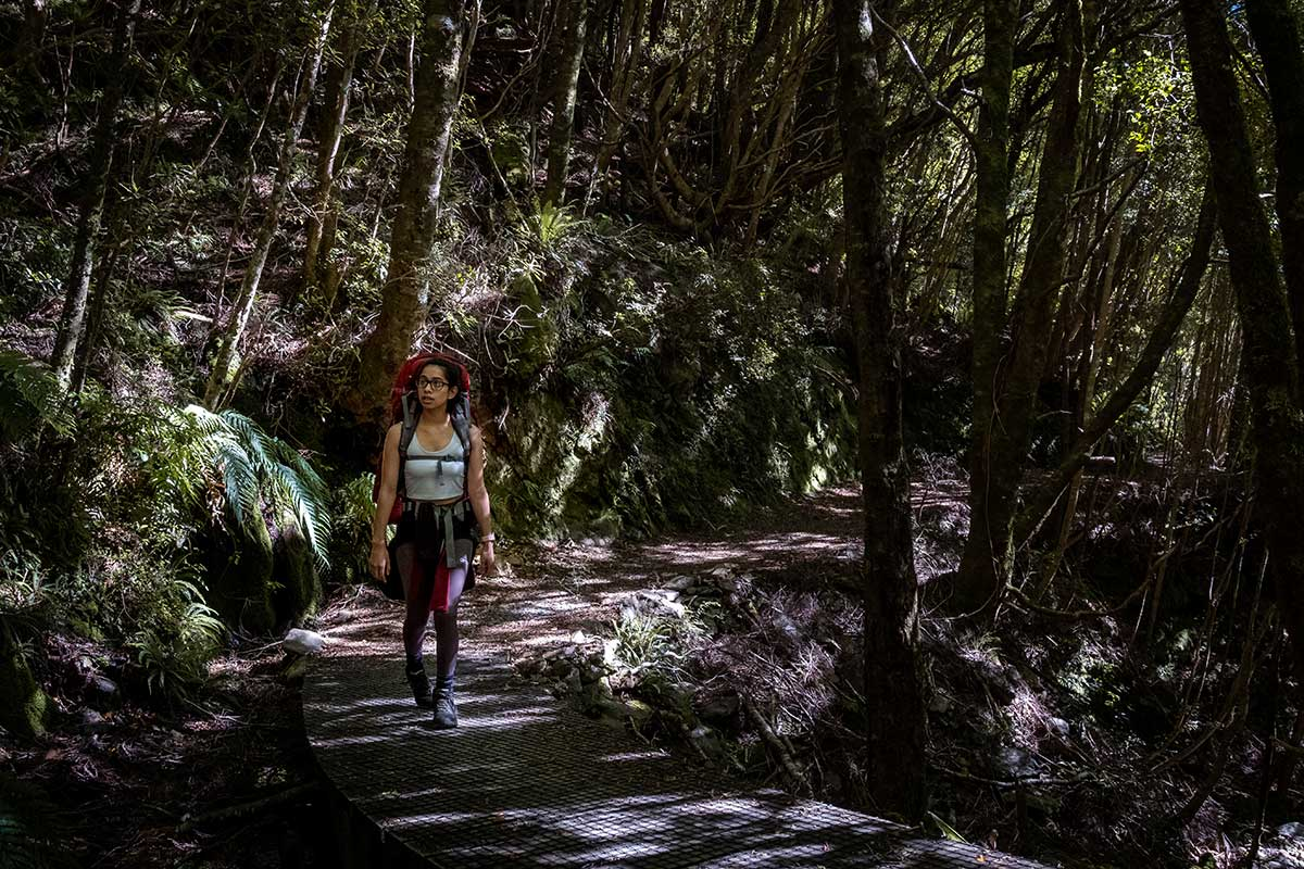 A woman walks along a wooden path through a forest of trees on the Heaphy Track.