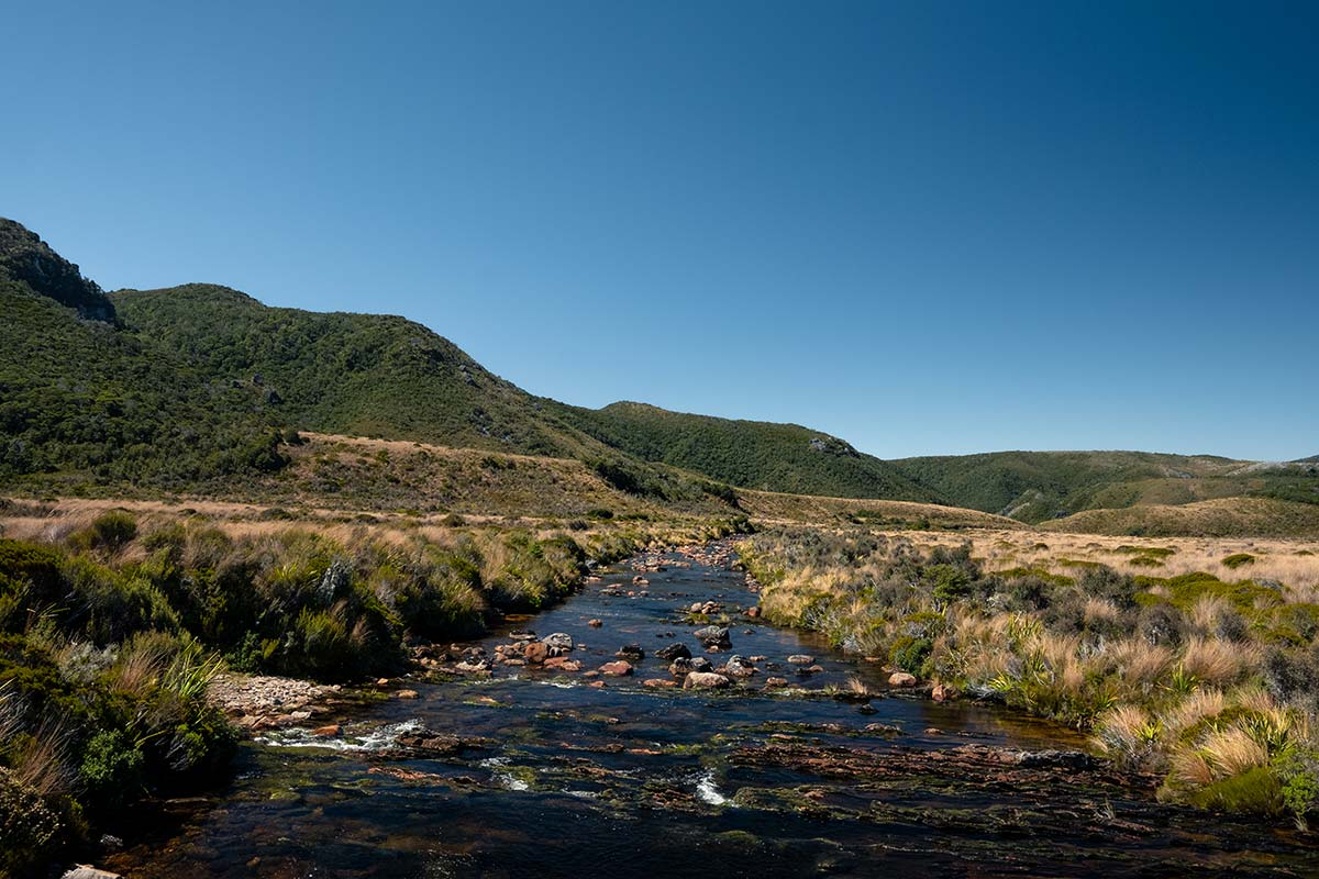 A large river flows away from camera towards the mountains ahead. This is the Heaphy River which is found on the Heaphy Track.