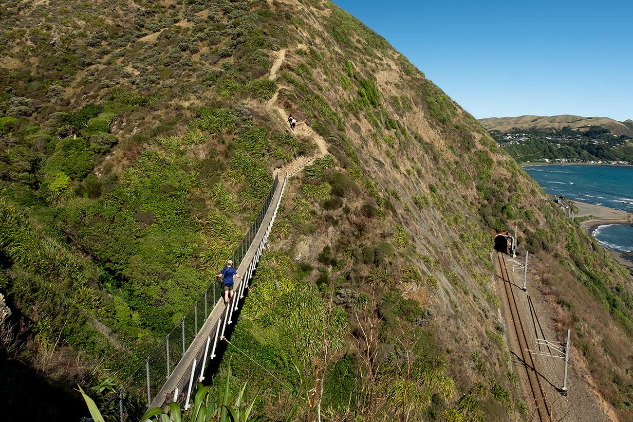 A swing bridge connects two hills on the Paekakariki Escarpment track. In the distance the ocean can be seen.