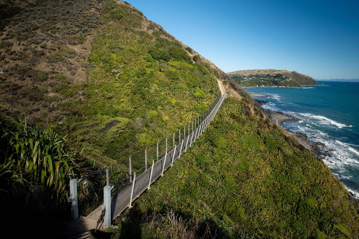 One of two swing bridges on the Paekakariki Escarpment track connects two hills. The land is covered in various green plants and in the background you can see the ocean.