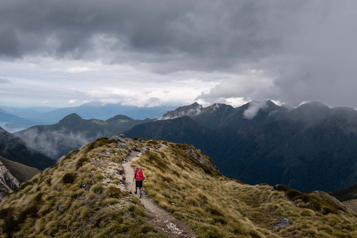A woman walks along a tussock covered ridge line on the Kepler Track. Ahead of her are dramatic looking clouds covering mountains.